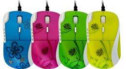 Des souris aux couleurs printanières