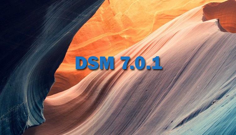 dsm701